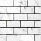Carrara 3x6 Polished Subway Tile