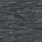 Coal Canyon Ledger Panel 6x24 Split Face