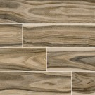 Dellano Deep Bark 8x48 Polished Wood Look Porcelain Tile