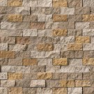 Travertine Blend 1x2 Split Face