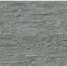 Mountain Bluestone 6x24 Split Face Ledger Panel